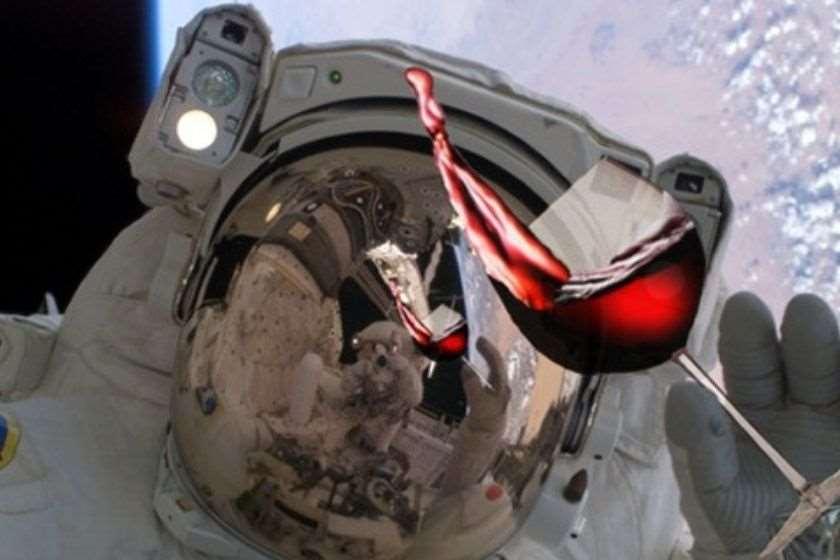 კოსმოსი ღვინო